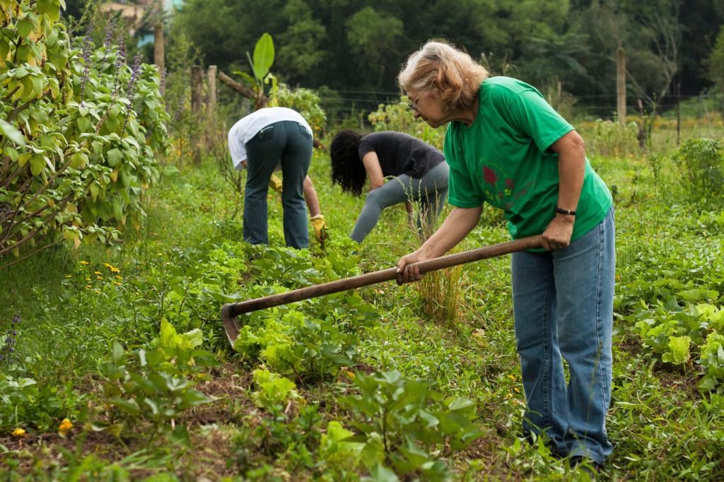 Pessoas de todas as idades ajudam na horta comunitária.